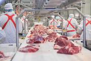 Работа на производственных линиях мясокомбината